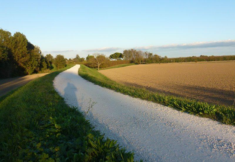 Percorso cicloturistico lungo il fiume Savio