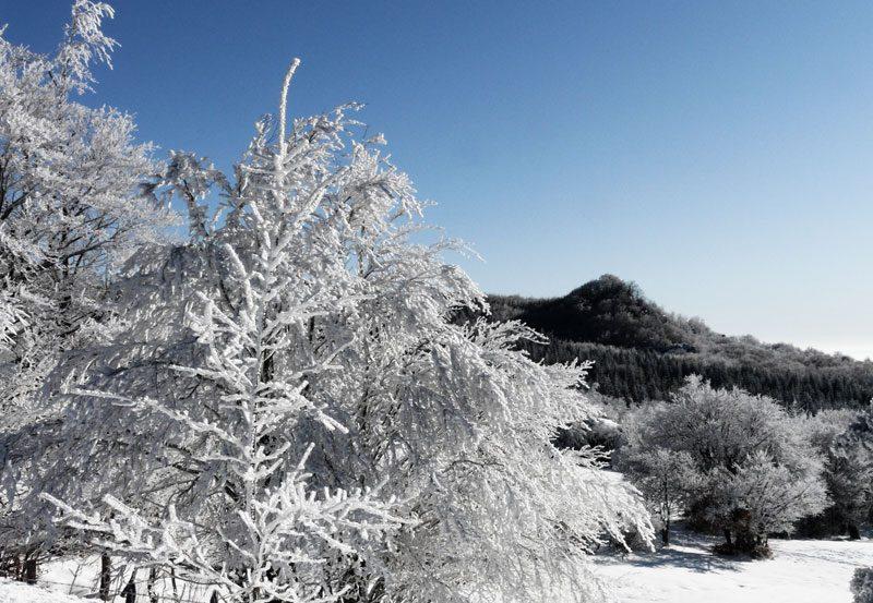 Percorsi escursionistici Monte Fumaiolo